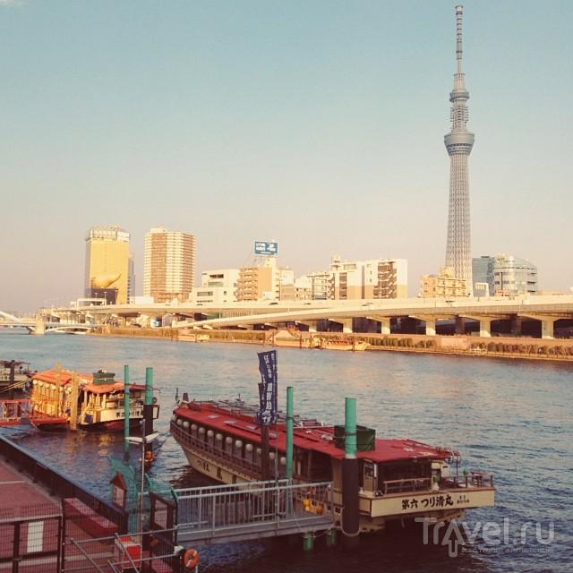 Токио, 1 января / Япония