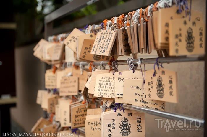 Как организовать поездку в Японию