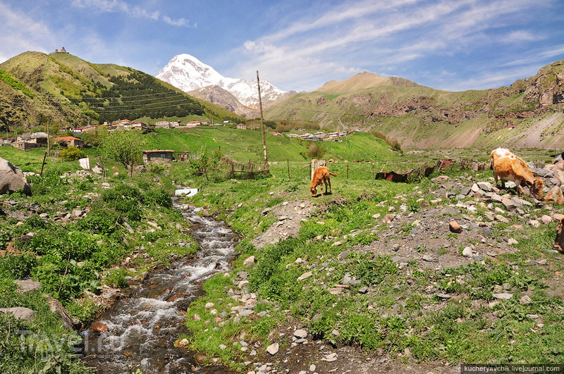 На Кавказе, Грузия / Фото из Грузии