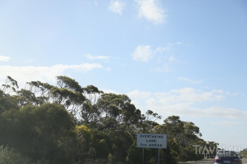 Австралия. Автопутешествие / Австралия