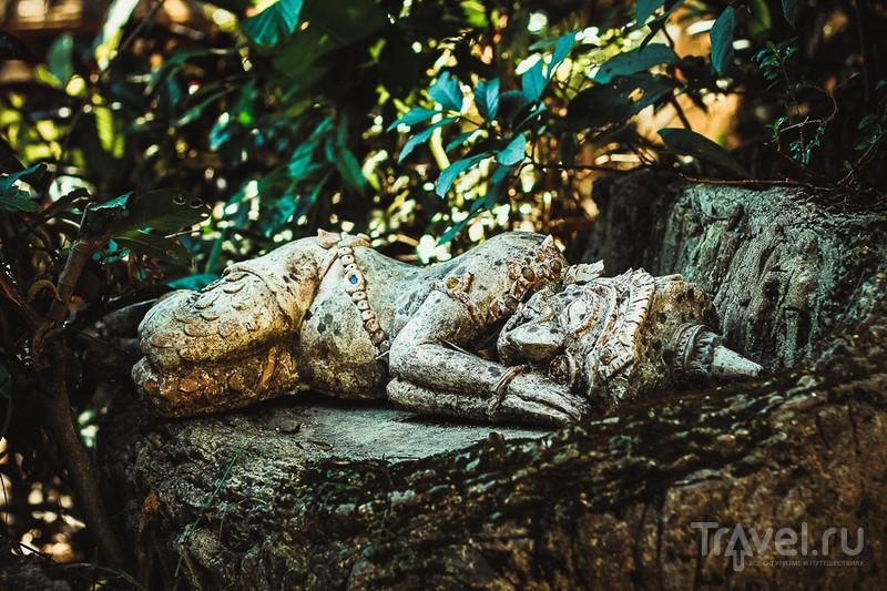 В храме Wat Pha Lat, Таиланд / Фото из Таиланда