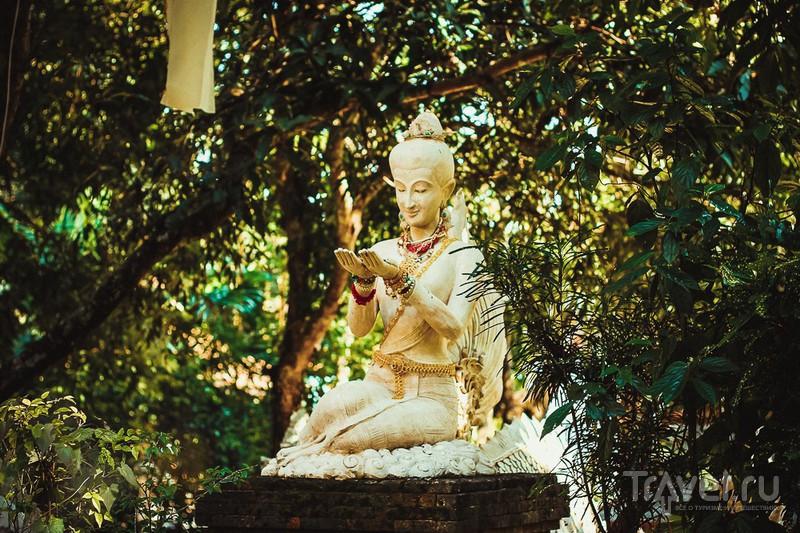 Wat Pha Lat или лесной храм / Фото из Таиланда