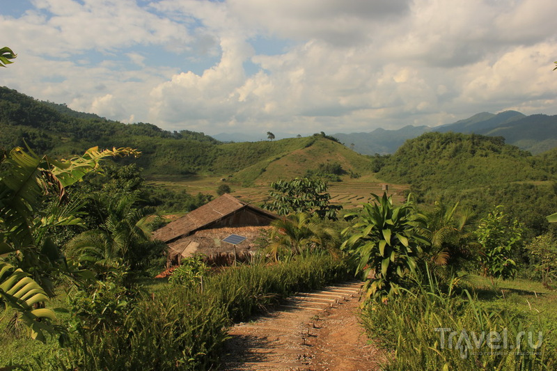 Поездка по северному Таиланду: Mae Salong, Chiang Saen, Phu Chi Fa, Mae Hong Son и другие места / Таиланд