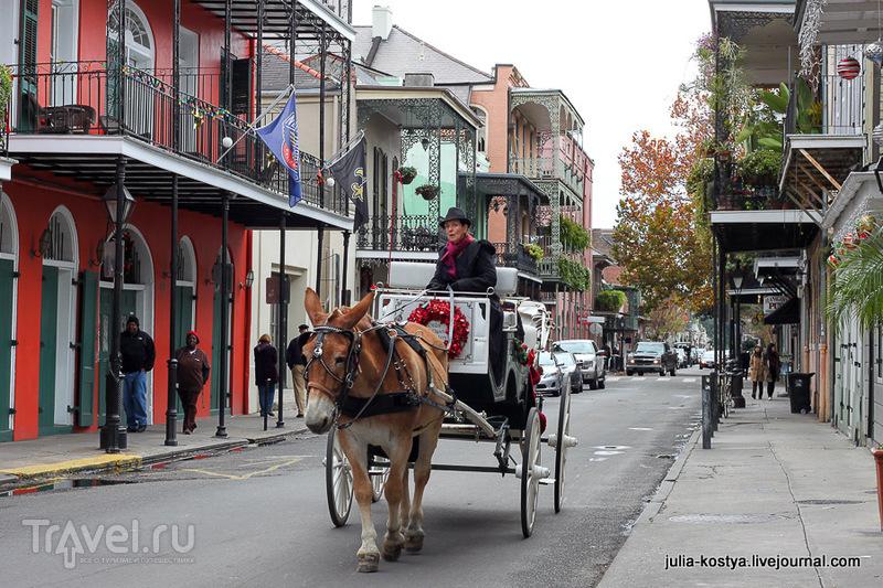 В Новом Орлеане, США / Фото из США