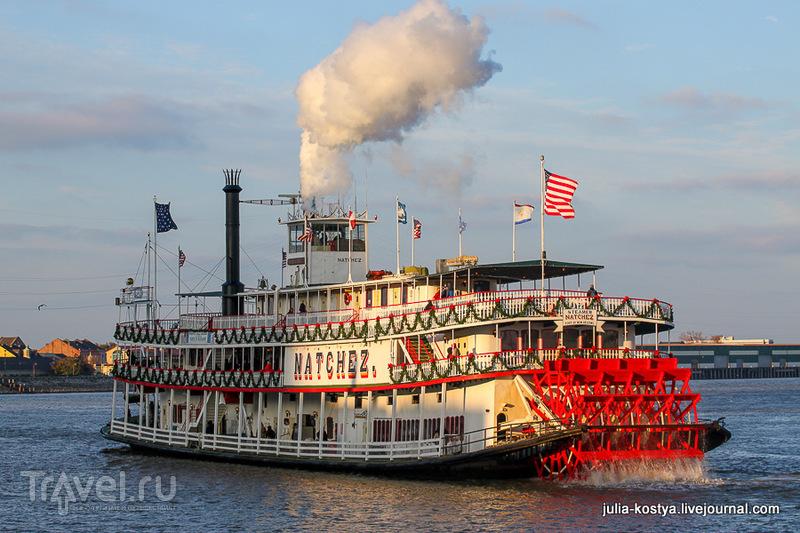 Река Миссисипи в Новом Орлеане, США / Фото из США