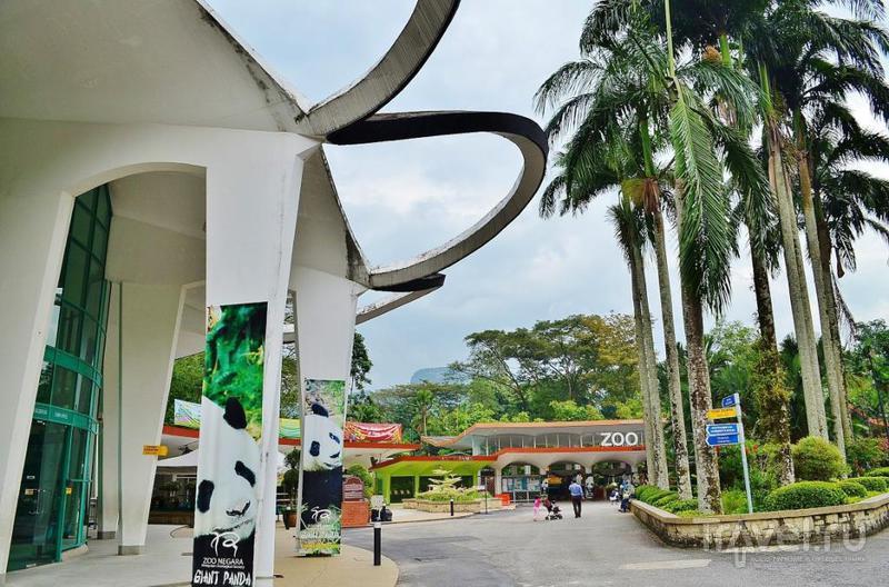Зоопарк Куала-Лумпура, Малайзия / Фото из Малайзии