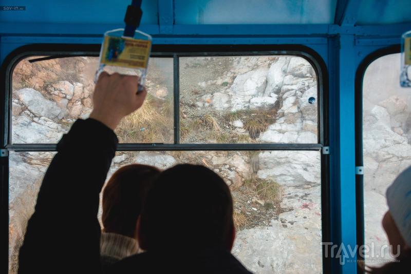Ялтинские каникулы / Фото с Украины