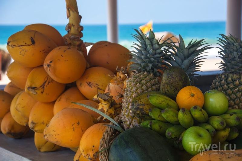 Шри-Ланка, пальмы, Новый год или как все-таки тесен мир! / Шри-Ланка
