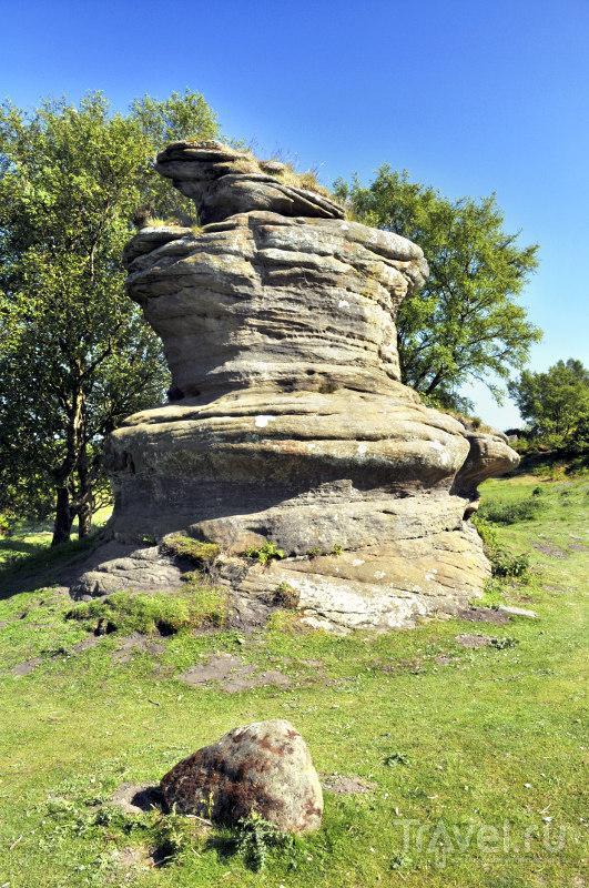 В очертаниях каменных глыб Бримэм-Рокс каждому видится что-то свое / Великобритания