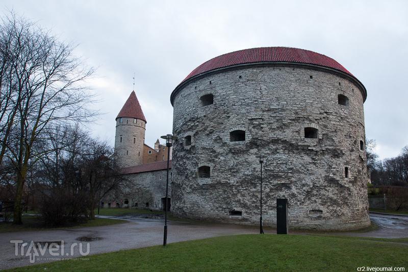 """Башня """"Толстая Маргарита"""" в Таллине, Эстония / Фото из Эстонии"""