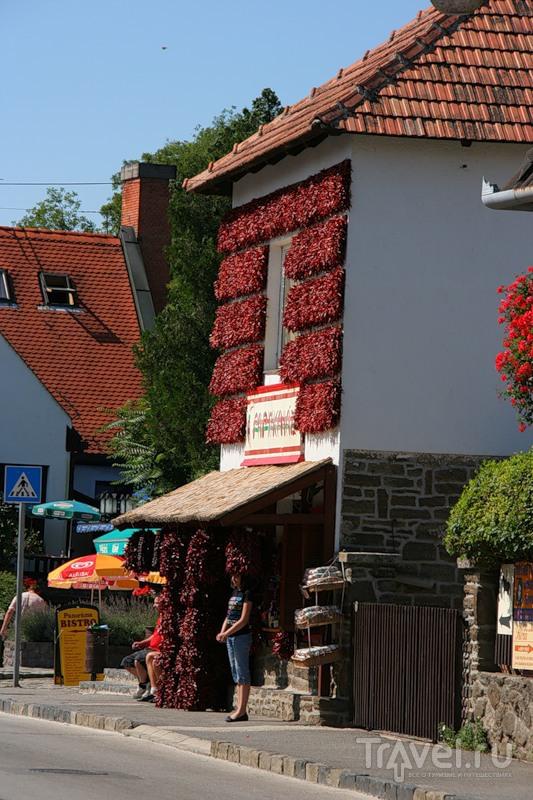 Венгрия. Балатон / Фото из Венгрии