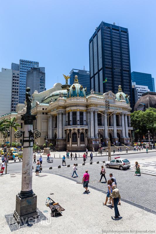 В городе Рио-де-Жанейро, Бразилия / Фото из Бразилии