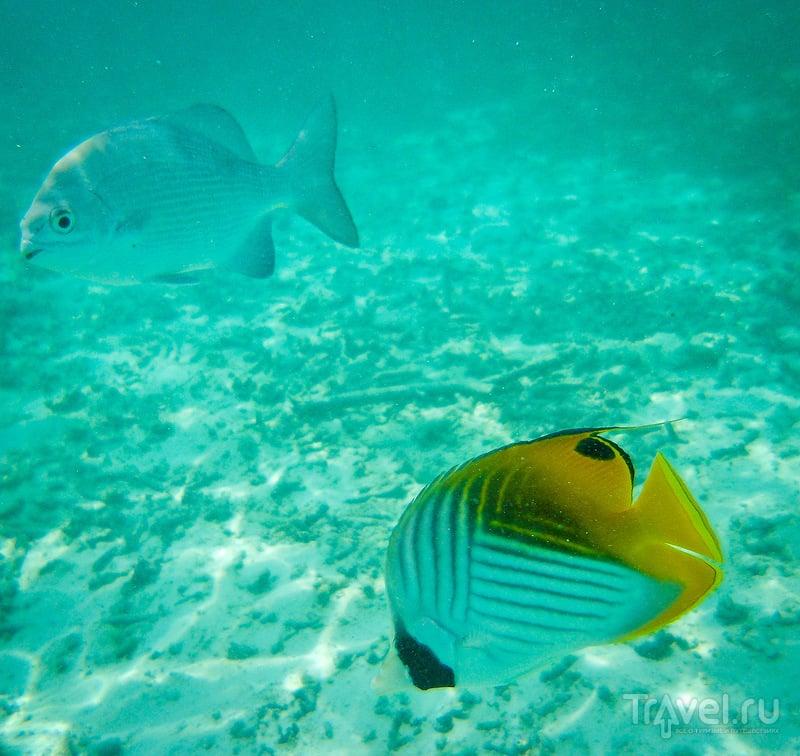 Мальдивы - Adaaran Select Hudhuran Fushi 4* / Мальдивы