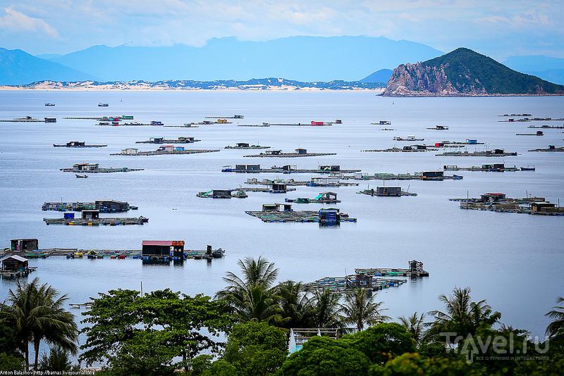 Вьетнам, провинция Фуйен / Фото из Вьетнама