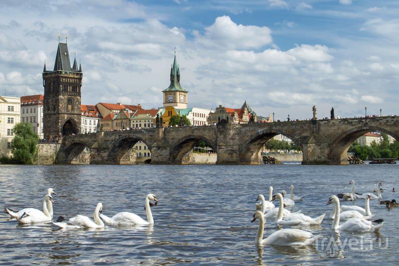 Чехия из ростова на дону туроператор