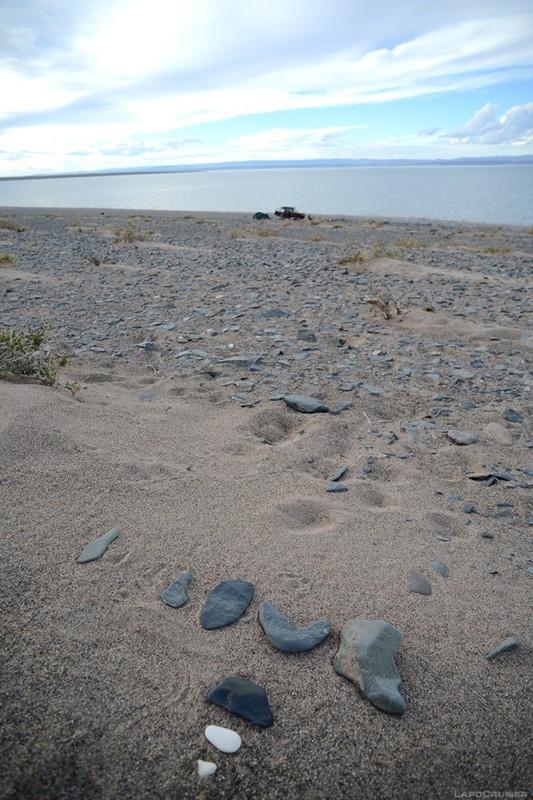 Монголия. Озеро, где растёт доширак / Монголия