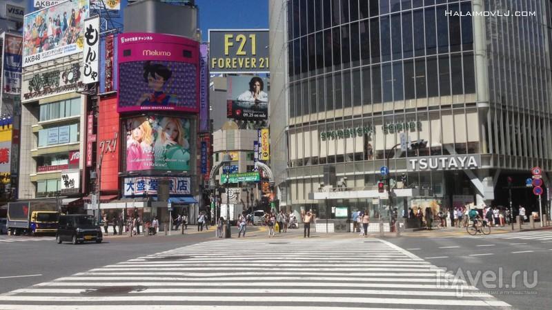 Япония в сентябре / Япония