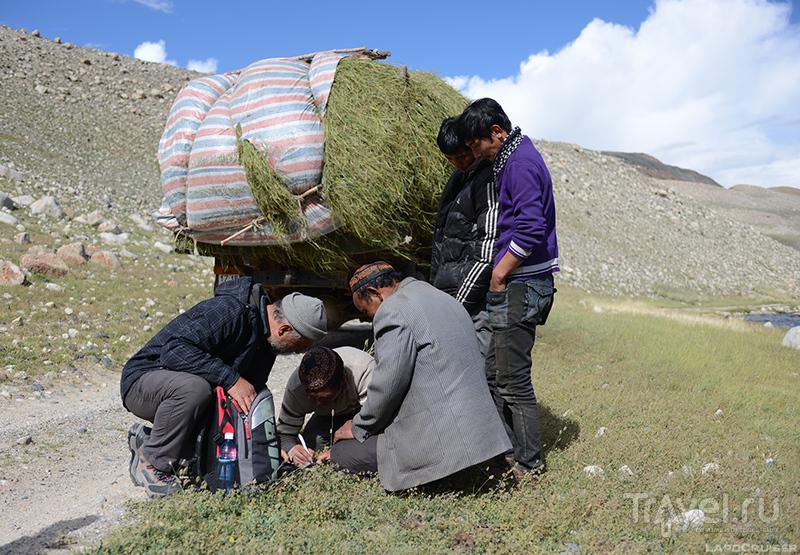 Монголия. Казахстанский край / Монголия