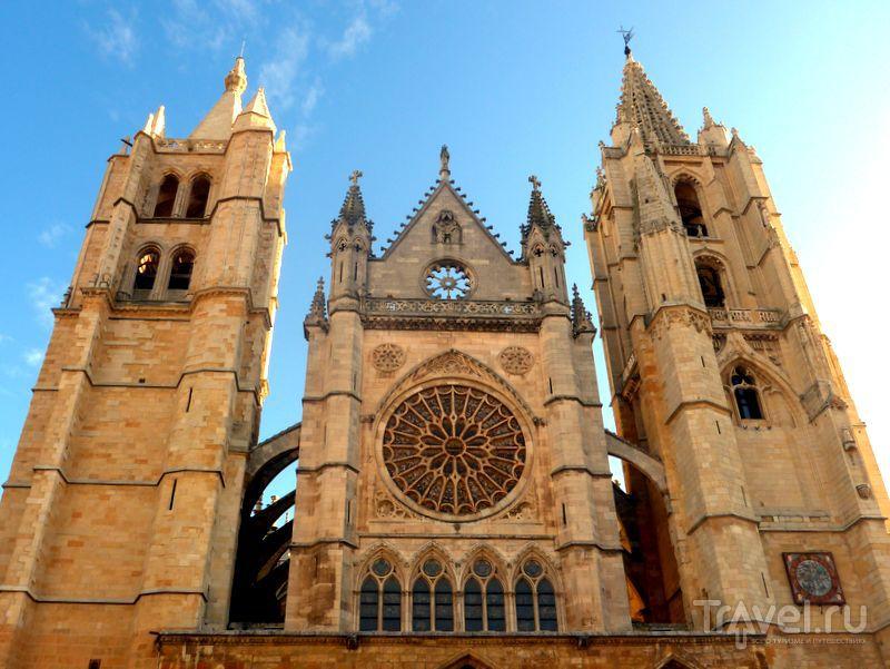 Собор Санта-Мария-де-Леон в Леоне, Испания / Фото из Испании