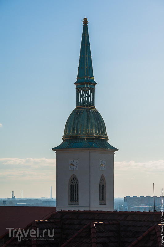 Собор Святого Мартина в Братиславе, Словакия / Фото из Словакии