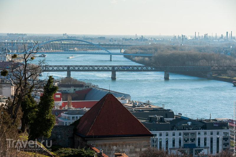 Река Дунай в Братиславе, Словакия / Фото из Словакии