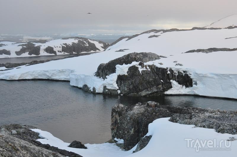 Антарктический кемпинг / Антарктика