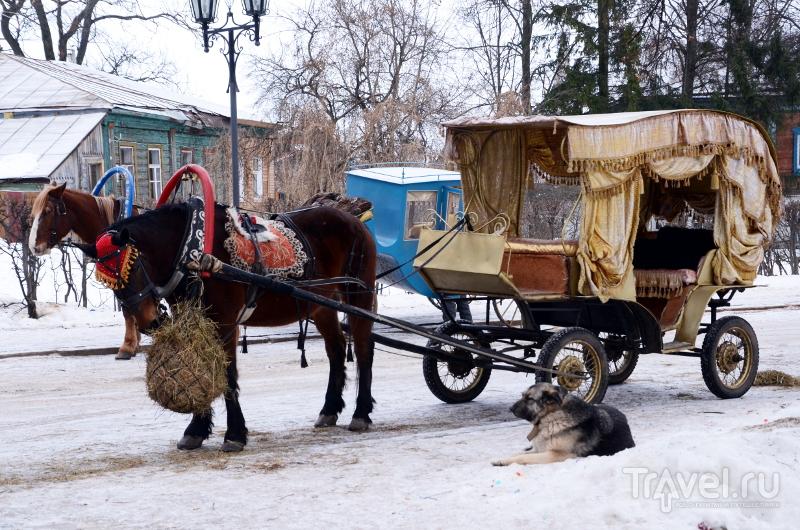 В Суздале очень много лошадей, карет и саней - это развлечение пользуется популярностью у туристов / Фото из России