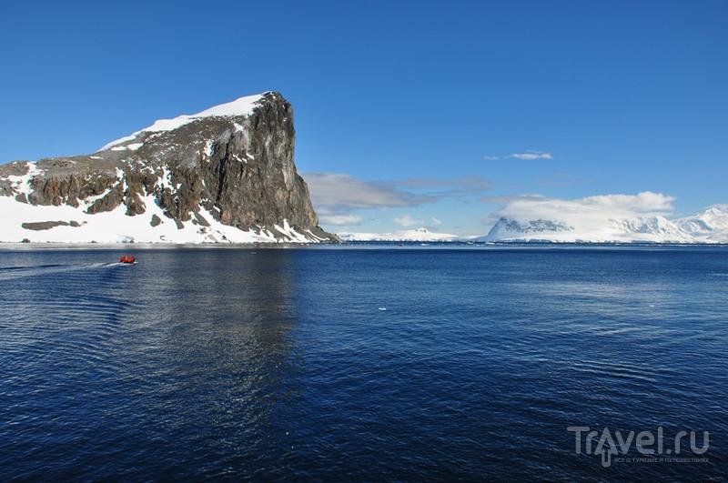 В Антарктиде / Фото из Антарктики