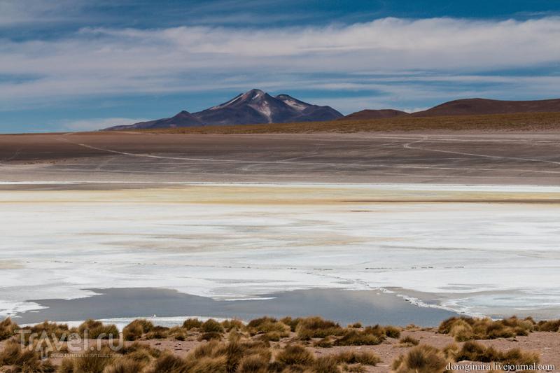 Разноцветье вод. Боливия / Фото из Боливии