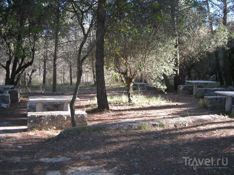 Поездка в пещеру Кова-Дель-Руй и немного дикой природы / Испания