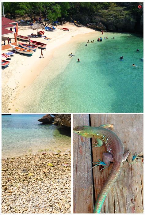 Caribbean, Dutch Antilles, Curacao / Фото с Кюрасао