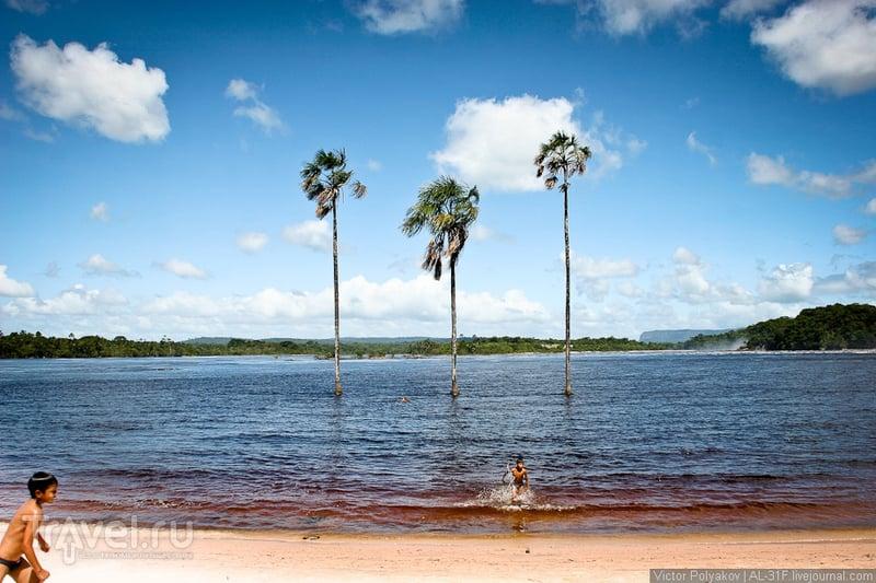 Водопады Канаймы. Венесуэла / Фото из Венесуэлы