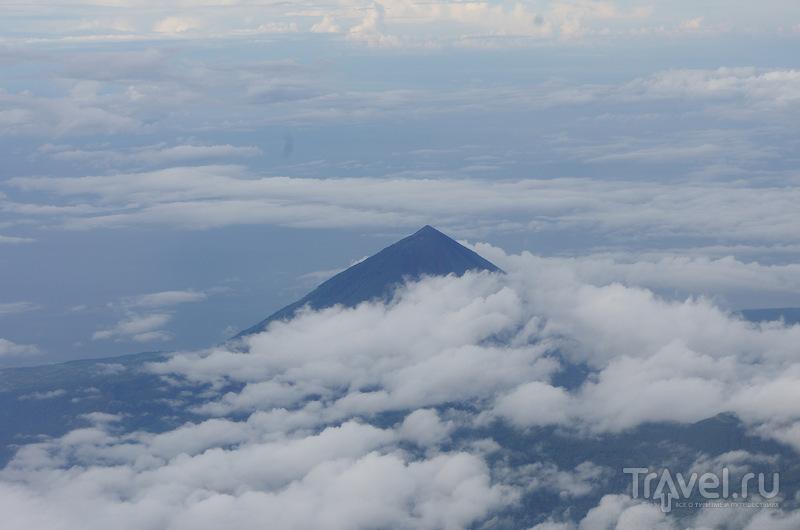 Индонезия. Флорес - Ринча / Индонезия