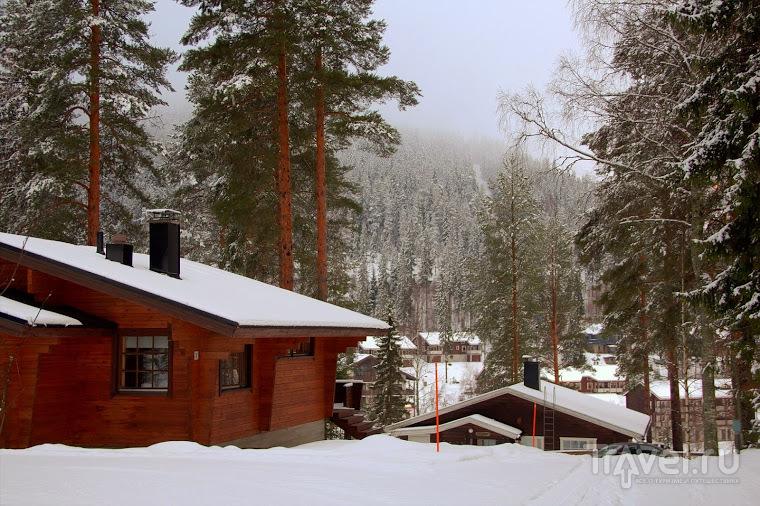 Лыжный отпуск в финском Тахко / Финляндия