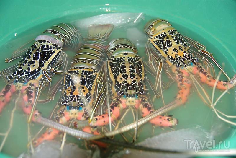 Приготовление и отпуск блюда рыба под маринадом