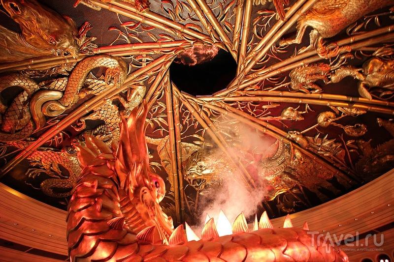 В Макао коала какао лакала / Фото из Макао
