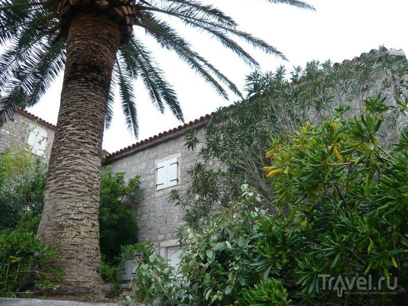 Остров-отель Святой Стефан в Черногории: фото изнутри