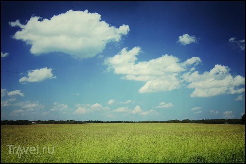 Бородино / Фото из России