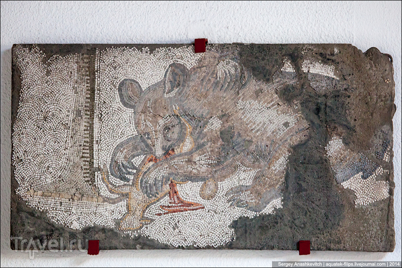 Музей уникальных византийских мозаик