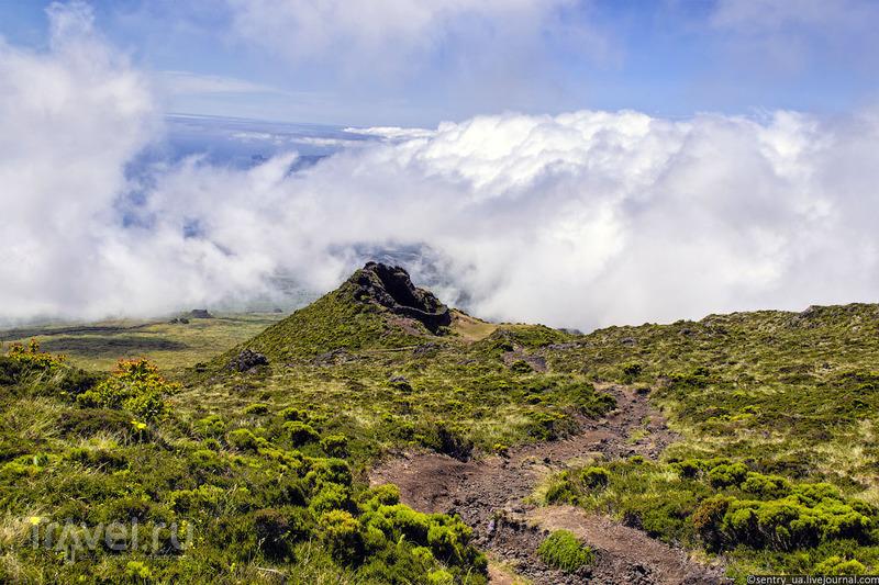 Остров Пику (Азорские острова) / Фото из Португалии