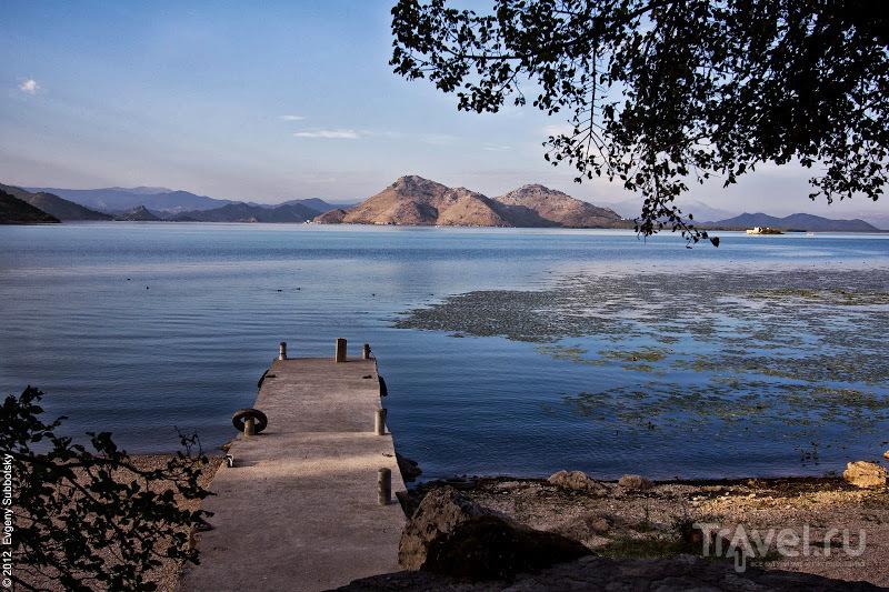 Скадарское озеро, Черногория / Фото из Черногории