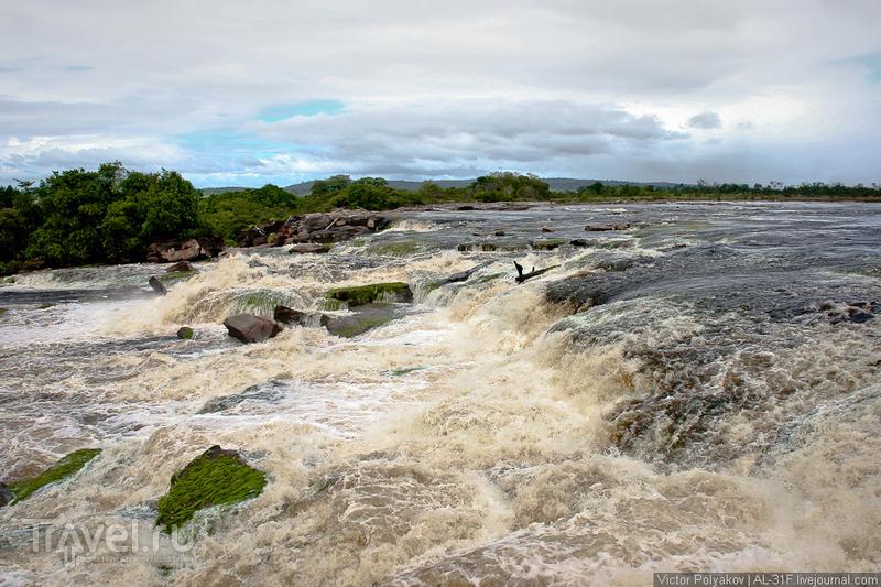 Анхель - самый высокий в мире водопад / Фото из Венесуэлы