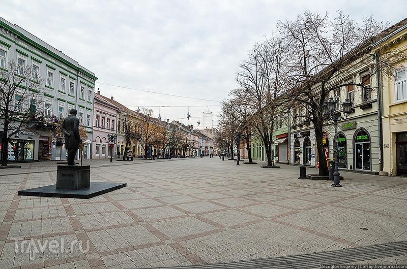"""""""Srecna Nova Godina!"""" или новый год по-сербски. Нови-Сад / Фото из Сербии"""