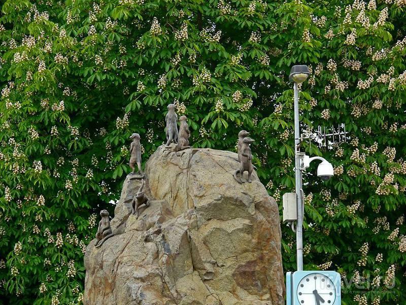 Прогулка по Пражскому зоопарку / Чехия