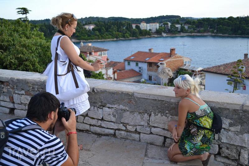 Хорватия. Ровинь / Хорватия