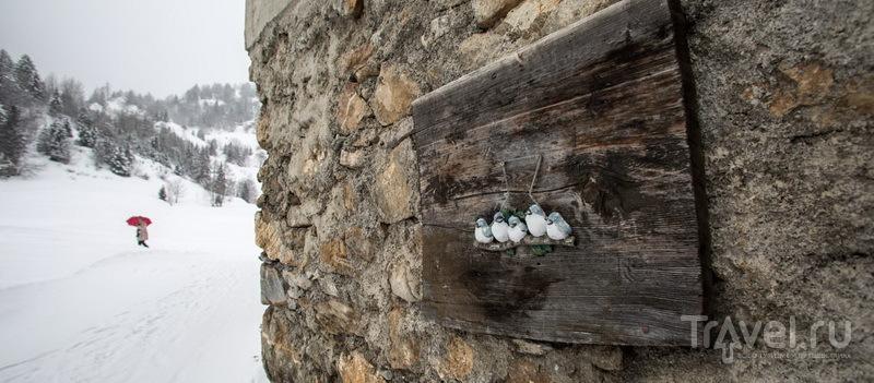 Сырреализм от Зины, или русский поход на швейцарскую сыроварню / Швейцария