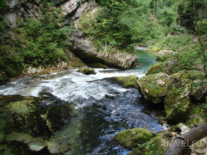 Словения - маленький рай. Винтгарское ущелье и Любляна / Словения