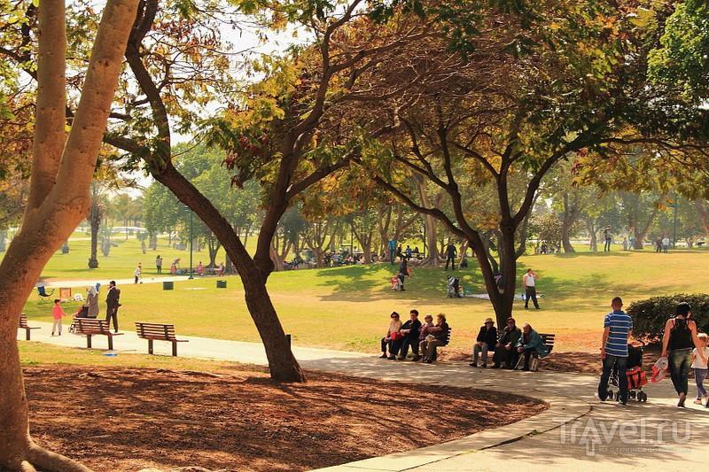 Тель-Авив. Парк Менахем Бегин - отличное место отдыха / Израиль
