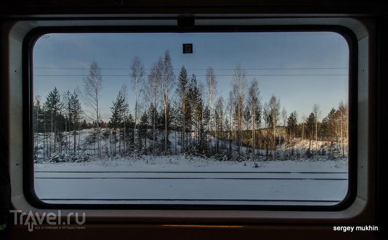 В гостях у сказки. Коли, Финляндия, Северная Карелия / Фото из Финляндии