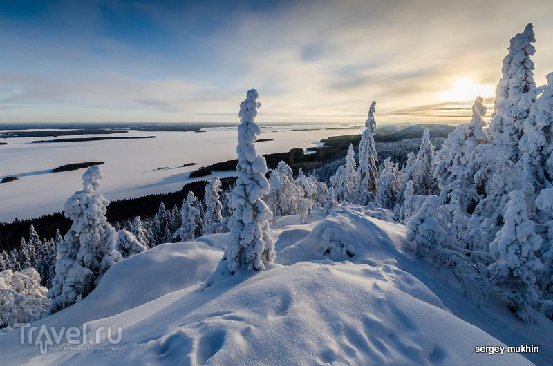 В национальном парке Укко-Коли (Ukko-Koli), Финляндия / Фото из Финляндии